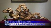 200多件崖柏黄花梨精品在市美术馆展出