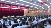 阳江市部署配合中央扫黑除恶督导工作