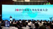 张传卫:创新是阳江打造海上风电航母的关键